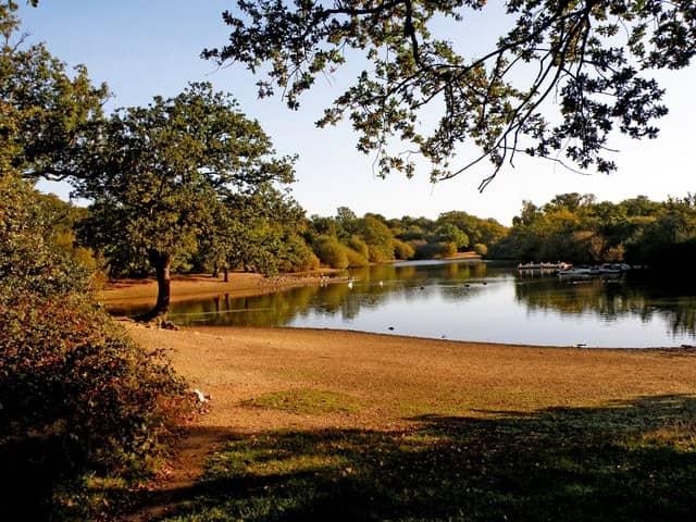hollow pond leytonstone