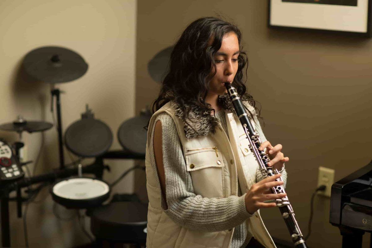 clarinet lessons at home or online