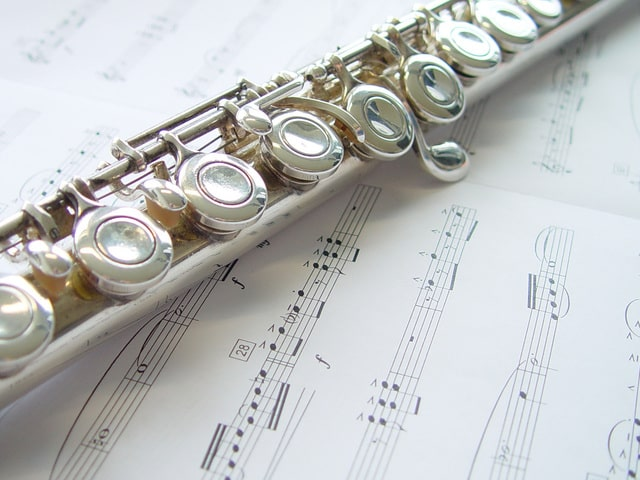 flute lessons at home or online