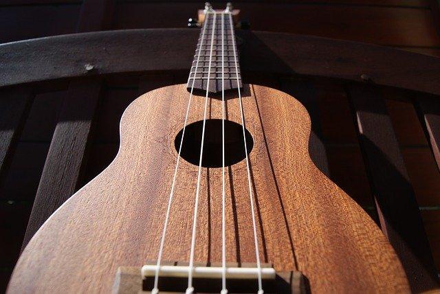 ukulele lessons at home or online